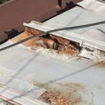 トタン屋根 雨漏り